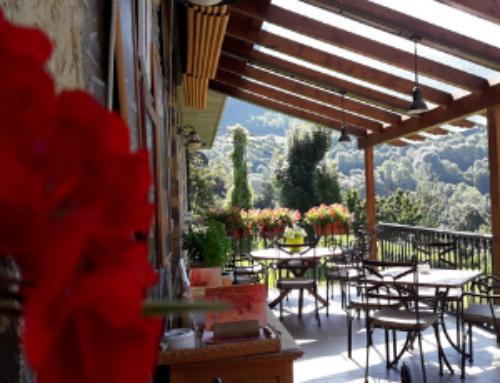 El Restaurante del Hotel Gastronómico Casa Anita recibe el premio Traveller´s Choice o certificado de Excelencia